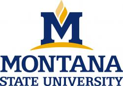 Montana State University, Civil Engineering Department
