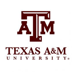 Texas A&M University, Mechanical Engineering Department, College of Engineering