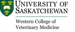 University of Saskatchewan, Western College of Veterinary Medicine, Small Animal Clinical Sciences Department